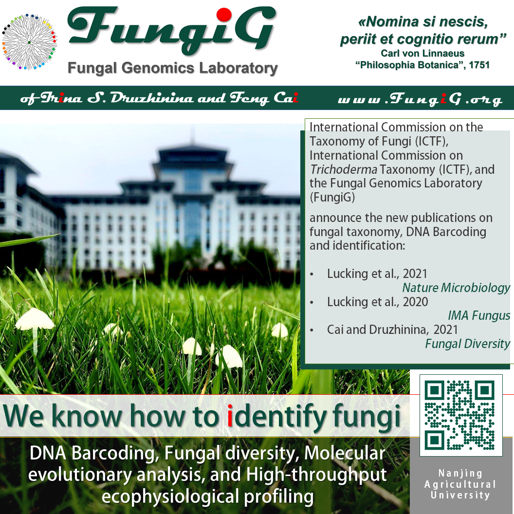 FungiG announces the three publications on fungal taxonomy